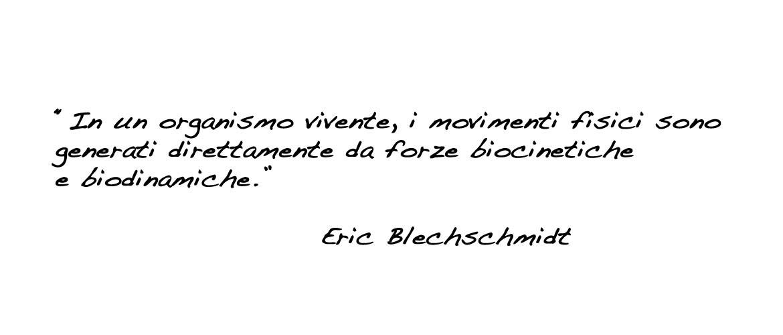 Osteopatia Biodinamica, Eric Blechschmidt.
